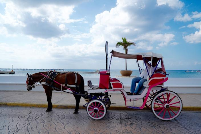 """The driver of a horse-drawn carriage awaits customers along Cozumel's seafront drive. The coronavirus pandemic has battered Mexico's tourism industry. <span class=""""copyright"""">(Liliana Nieto del Rio / For The Times)</span>"""