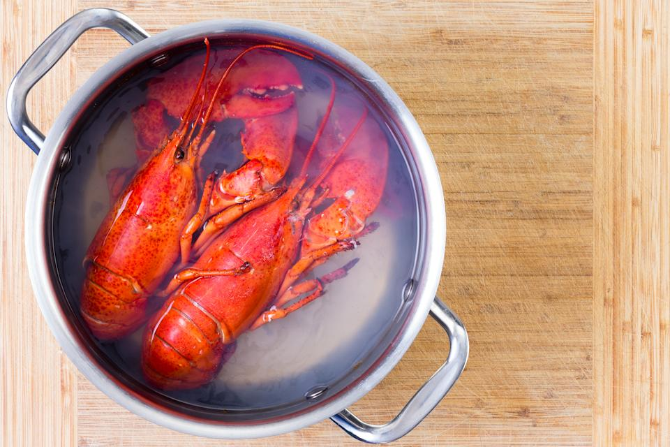 Two red lobsters in a pot of boiling water cooling off on a wooden cutting board after being cooked, viewed from above with copy space