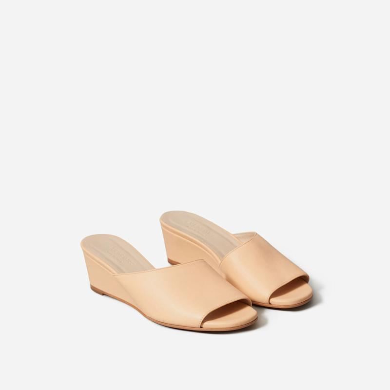 Image via Everlane