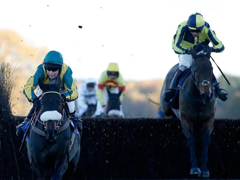Go Conquer stands out in the Randox Health Topham Chase (Getty)