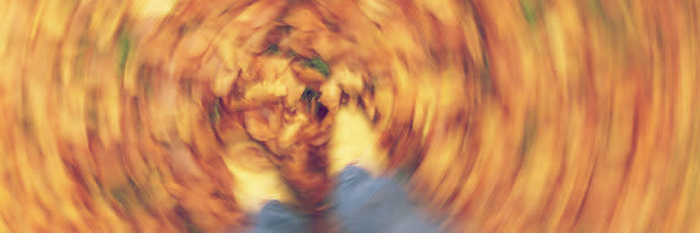 Motion blurred photograph of man or woman's feet walking through golden Fall or Autumn leaves
