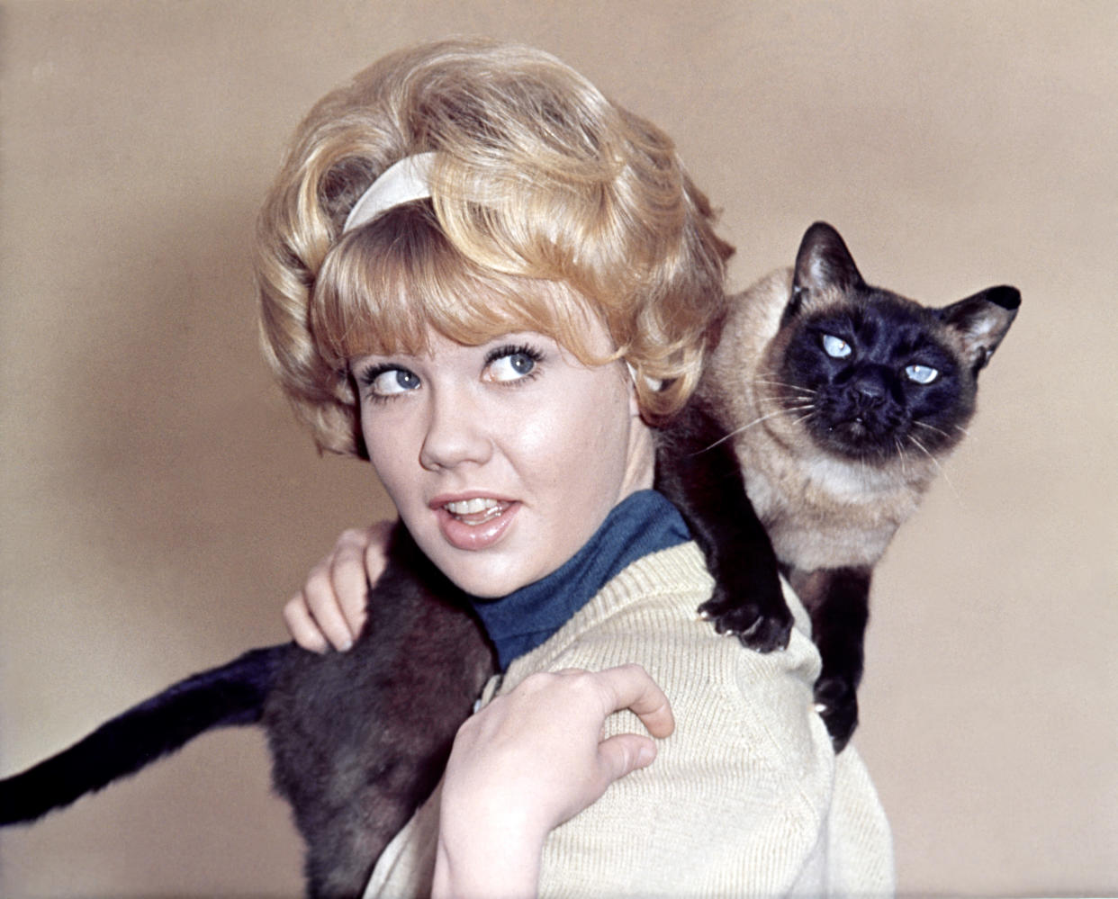 Hayley Mills on the set of That Darn Cat!, directed by Robert Stevenson. (Photo: Walt Disney Productions/Sunset Boulevard/Corbis via Getty Images)