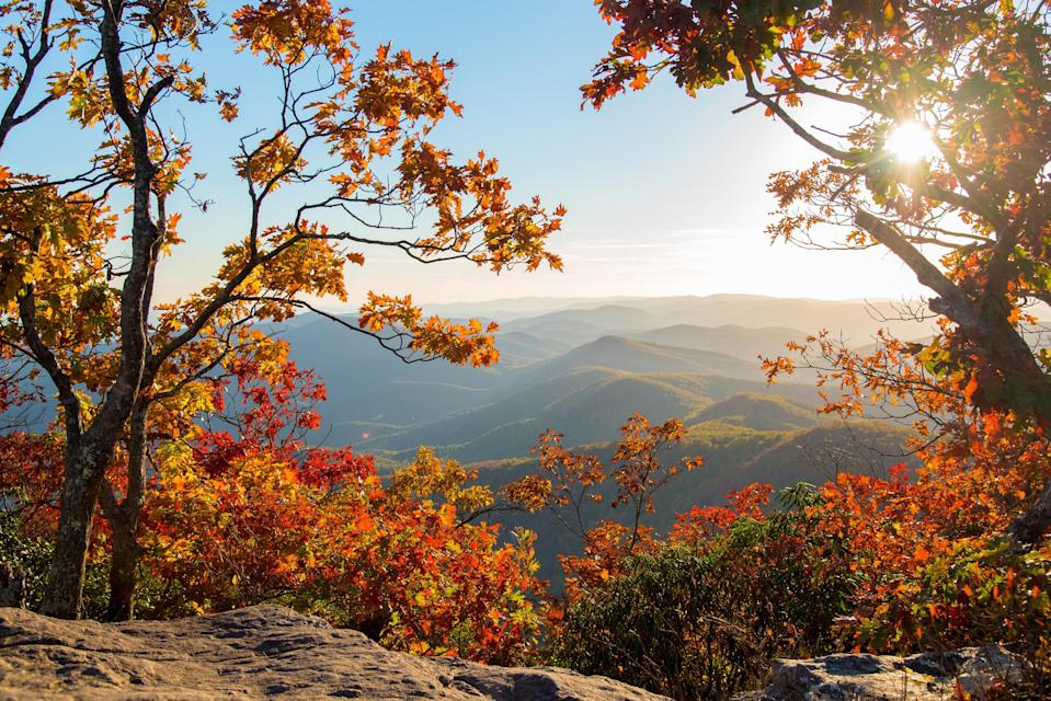 When the Blue Ridge Mountains turn into movie-worthy scenery of yellow, red, and golden hues, the already popular Vogel State Park (one of Georgia's oldest) becomes buzzier than ever. DeSoto Falls is an easy family-friendly trail that will take you right past a waterfall.