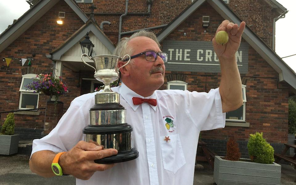 Chris Jones, who produced a 45g whopper for the judges at the Goostrey Gooseberry Society annual awards 2021 - John Williams/SWNS