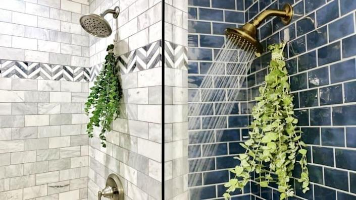 With immune-boosting properties, this beautiful bunch of eucalyptus will help you emerge from your shower feeling refreshed from the inside out.