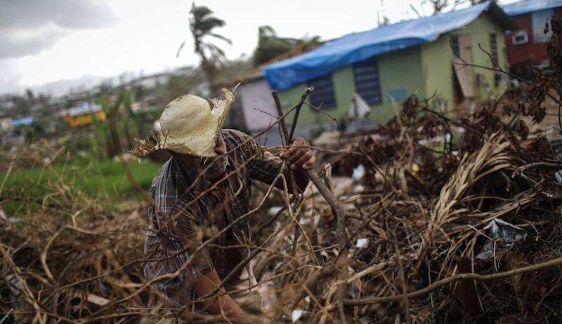 A man clears destroyed tree branches in a neighborhood in San Isidro, Puerto Rico, that's been without grid electricity for weeks. Eighty percent of the island hasn't had power for more than a month.
