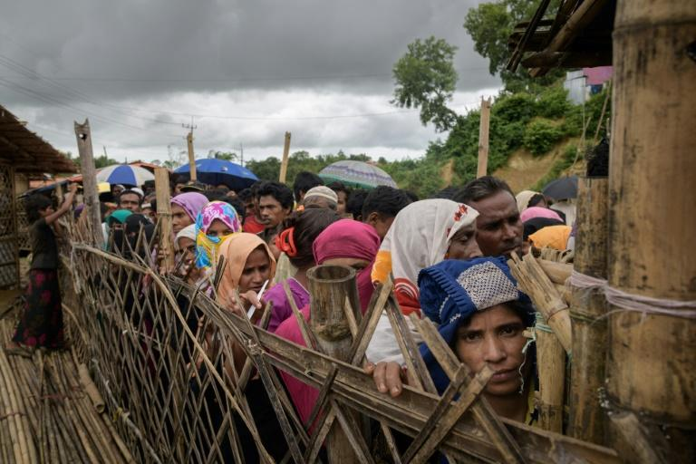 Bangladesh says it will start repatriating Rohingya refugees despite warnings they face almost certain persecution in Myanmar