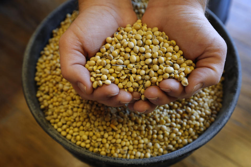 FILE - In this Nov. 21, 2018, file photo, Justin Roth holds a handful of soybeans at the Brooklyn Elevator in Brooklyn, Iowa. President Donald Trump spent four years upending seven decades of American trade policy. He started a trade war with China, slammed America's closest allies by taxing their steel and aluminum and terrified Big Business by threatening to take a wrecking ball to $1.4 trillion in annual trade with Mexico and Canada. Trump's legacy on trade is likely to linger, regardless whether Joe Biden replaces him in the White House in January 2021. (AP Photo/Charlie Neibergall, File)