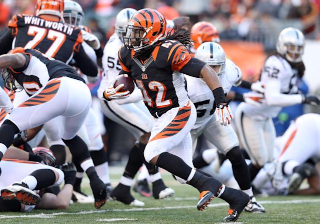 CINCINNATI, OH - NOVEMBER 25: BenJarvus Green-Ellis #42 of the Cincinnati Bengals runs with the ball during the NFL game against the Oakland Raiders at Paul Brown Stadium on November 25, 2012 in Cincinnati, Ohio. (Photo by Andy Lyons/Getty Images)
