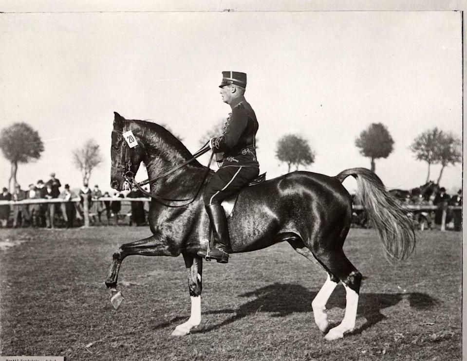 """<p>Another scandal occurred in 1932 when Swedish competitor Bertil Sandström was demoted to last place after receiving the silver medal in equestrian dressage. Officials claimed <a href=""""https://www.rferl.org/a/olympic-cheats-through-history/27867140.html"""" rel=""""nofollow noopener"""" target=""""_blank"""" data-ylk=""""slk:he was illegally &quot;clicking&quot; encouragement to his horse"""" class=""""link rapid-noclick-resp"""">he was illegally """"clicking"""" encouragement to his horse</a>, meanwhile he maintained it was the creak of his saddle.</p>"""