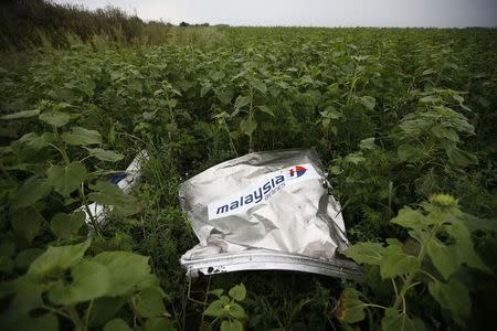 Debris from a Malaysian Airlines Boeing 777 that crashed on Thursday lies on the ground near the village of Rozsypne in the Donetsk region