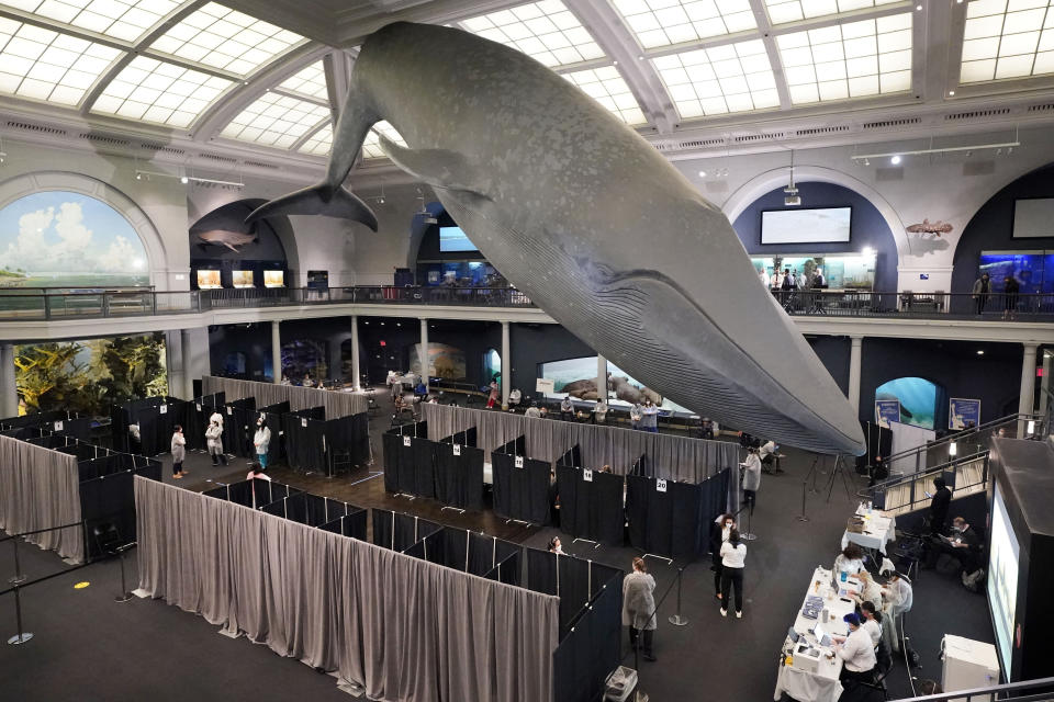COVID-19 vaccination cubicles are set up under the 94-foot-long, 21,000-pound model of a blue whale, in the Milstein Family Hall of Ocean Life, at the American Museum of Natural History, in New York, Friday, April 23, 2021. Appointments are no longer necessary at any of the coronavirus vaccination sites run by New York City. New York City Mayor Bill de Blasio announced Friday that anyone eligible for the vaccine could walk up to any of the city's mass vaccination sites and get a shot. The change comes as supplies of the vaccine have increased. (AP Photo/Richard Drew)