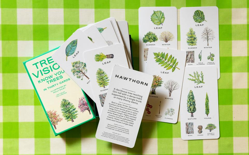 Know your stuff: Tree Vision cards -  Andrew Crowley
