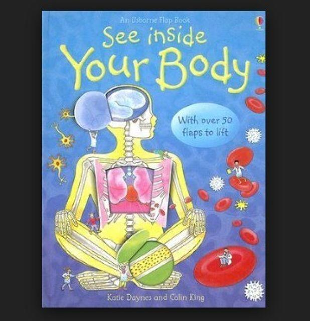 Book Review: See Inside My Body By Katie Daynes