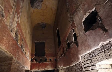 Painted walls and a painted roof are pictured inside the Domus Aurea (House of Gold) complex in Rome, October 24, 2014. REUTERS/Stefano Rellandini