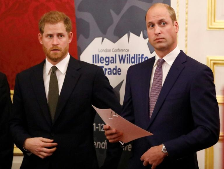 The announcement reportedly caused acrimony between Prince Harry and his elder brother Prince William (r)