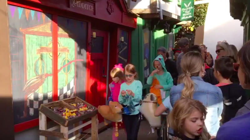 Muggle Dad's Homemade Diagon Alley Will Make You Believe In Magic