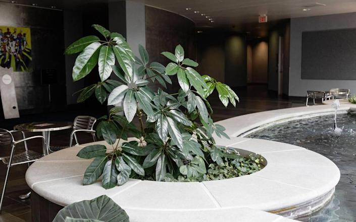 The Potting Shed maintains interior plants and gardens, such as this atrium inside the AT&T call center.
