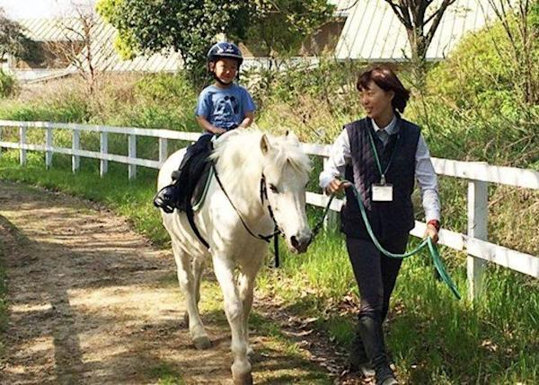 ▲The small pony rides are very popular with children (available from 4 years to adults; reservation not required). (Business hours: 9:00AM~7:00PM, Closed Tuesdays; ¥700, tax included; Phone: 06-6915-0034)