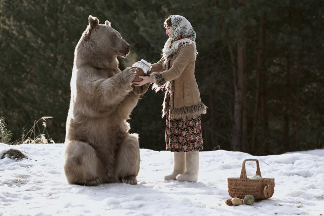 "<p>""I contacted his owners, Svetlana and Yuriy Panteleenko, who adopted the bear — he was just 3 months old — and did my first photo shoot with him."" (Photo: Olga Barantseva/Caters News) </p>"