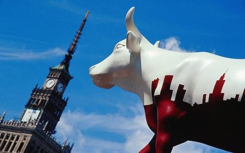 The original sculpture trail - the CowParade, in Warsaw - Credit: Getty