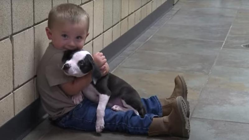 Little boy with cleft lip adopts a puppy with a cleft lip