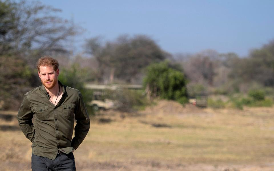 Prince Harry at a tree planting ceremony in Botswana in 2019 - PA
