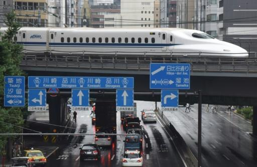 <p>First 'serious incident' for Japan bullet train as crack found</p>