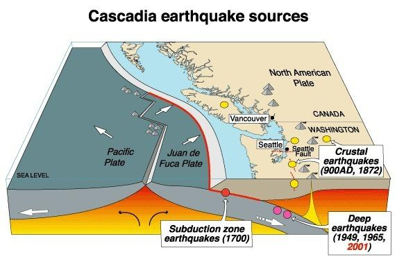 A cross-section of a portion of the Cascadia subduction zone.