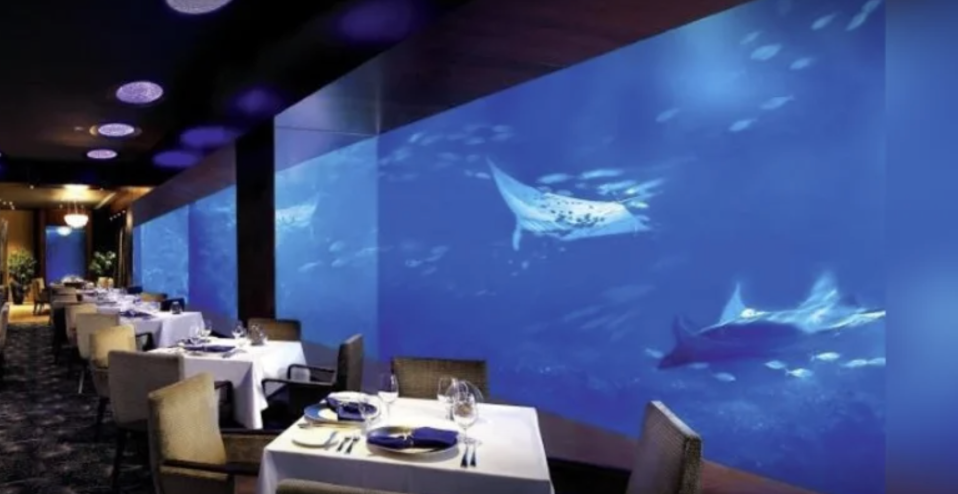 PHOTO: Klook. Air & Sea Immersive Dining Experience