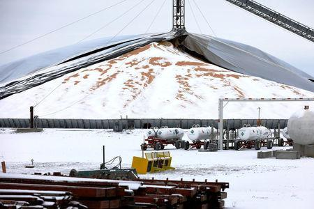A mountain of grain sits in a storage pile, as midwestern grain farmers and merchants struggle to find storage space after three years of record harvests, near Minburn, Iowa, U.S., March 11, 2017. REUTERS/Scott Morgan