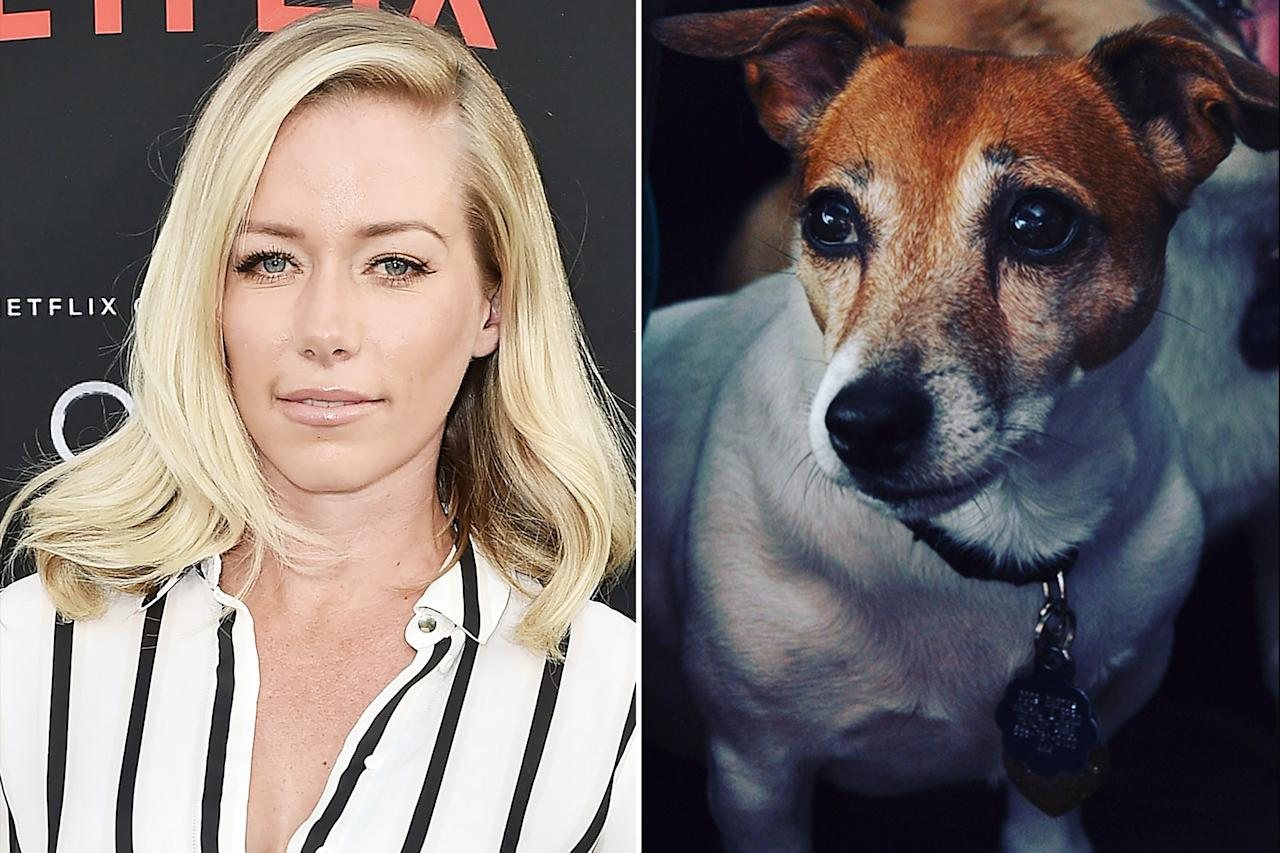 Martini the dog was with Kendra Wilkinson for 16 years, including when she lived in the Playboy Mansion