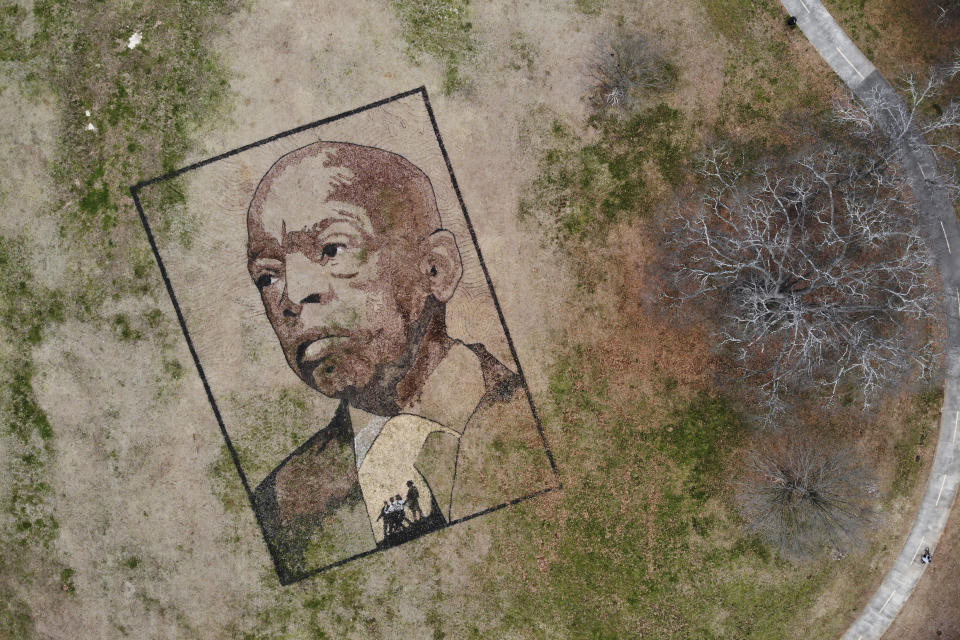 A portrait of John Lewis the longtime congressman and civil rights leader, is seen in this aerial view Thursday, Feb. 4, 2021, at Freedom Park in Atlanta. Artist Stan Herd created this earthworks piece in recognition of John Lewis' life and work. (AP Photo/Angie Wang)