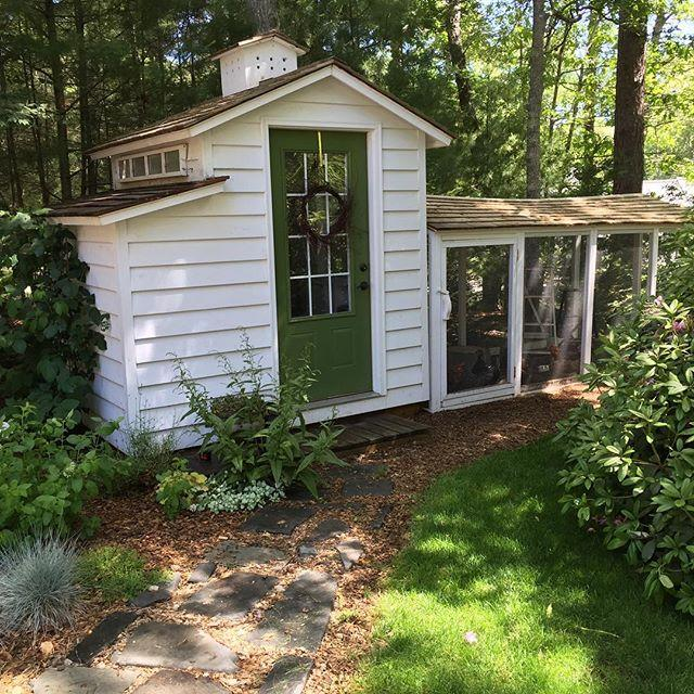 """<p>HGTV is certainly in need of more outdoor home and gardening shows, and this one would focus on chickens.Melissa could help families through every stage of caring for chickens, whether it'sbuilding their coop orkeeping their flock healthy.</p><p><br></p><p><strong>See more at<a rel=""""nofollow"""" href=""""http://www.tillysnest.com"""">Tilly's Nest</a></strong><span><strong>.</strong></span></p>"""