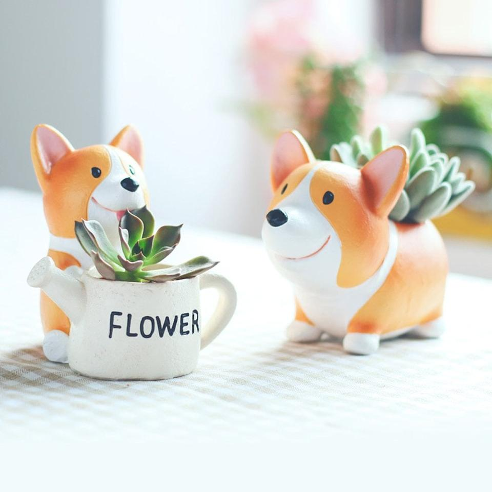 "<p>If you're a plant lady and a corgi-lover, this <a href=""https://www.popsugar.com/buy/Anpatio-Mini-Resin-Animal-Plant-Pot-476952?p_name=Anpatio%20Mini%20Resin%20Animal%20Plant%20Pot&retailer=amazon.com&pid=476952&price=17&evar1=savvy%3Aus&evar9=46470850&evar98=https%3A%2F%2Fwww.popsugar.com%2Fsmart-living%2Fphoto-gallery%2F46470850%2Fimage%2F46470912%2FAnpatio-Mini-Resin-Animal-Plant-Pot&list1=shopping%2Cgifts%2Cgift%20guide%2Ccorgis%2Cgifts%20for%20her&prop13=api&pdata=1"" rel=""nofollow"" data-shoppable-link=""1"" target=""_blank"" class=""ga-track"" data-ga-category=""Related"" data-ga-label=""https://www.amazon.com/Anpatio-Adorable-Succulent-Flowerpot-Decoration/dp/B074NZT614/ref=sxin_2_osp58-1da89b60_cov?ascsubtag=1da89b60-d0b9-4170-8b80-99b73b613255&amp;creativeASIN=B074NZT614&amp;crid=1TIFZB7UW43GF&amp;cv_ct_id=amzn1.osp.1da89b60-d0b9-4170-8b80-99b73b613255&amp;cv_ct_pg=search&amp;cv_ct_wn=osp-search&amp;keywords=corgi+gifts&amp;linkCode=oas&amp;pd_rd_i=B074NZT614&amp;pd_rd_r=47c8b1a6-9fb6-4efb-894d-7f8f9e8ffd56&amp;pd_rd_w=JFMYA&amp;pd_rd_wg=tq0um&amp;pf_rd_p=c501273b-119a-4fc9-ad78-eda5006b0be9&amp;pf_rd_r=E947606DH7PXSCYP0CGG&amp;qid=1565207709&amp;s=gateway&amp;sprefix=corgi%2Caps%2C200&amp;tag=peopleosp-20"" data-ga-action=""In-Line Links"">Anpatio Mini Resin Animal Plant Pot</a> ($17) was made for you.</p>"