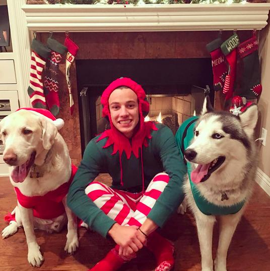 "<p>No young heartthrob can resist the allure of taking pictures with cute animals, and Dallas does plenty of that on his Instagram account, from which he shares photos of his dogs <a href=""https://www.instagram.com/huskyjaxx/"">Jaxx</a>, a husky, and <a href=""https://www.instagram.com/jakeybakeydallas/"">Jake</a>, a yellow lab. Both also have their own Instagram accounts, which have 267k and 33.5k followers respectively. So basically, people are more interested in the life of internet famous dogs than the fried chicken or red-velvet waffles you had at brunch this weekend. Deal with it.</p>"