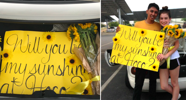 Avinash Pai, left, set up a sweet and thoughtful homecoming proposal to Sam Dutcher, right, that's gone viral. (Photo: Twitter/spamdootcher)