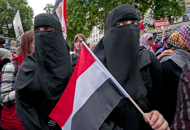 Ukip want to ban the burka in Britain (Rex)