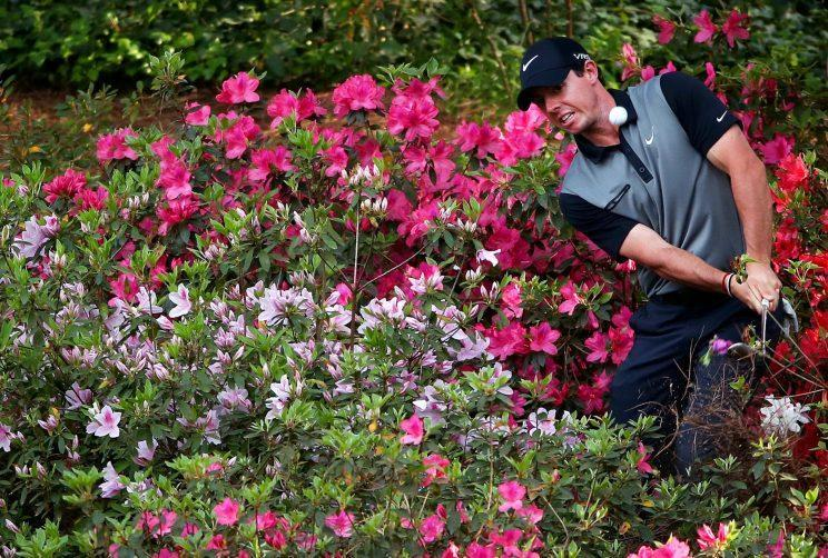 Rory McIlroy might not have as much trouble with azaleas this year. (Getty)