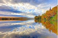"""<p>Vermont's Northeast Kingdom is known as one of the best leaf-peeping destinations in the country. It even has an annual fall foliage festival and a <a href=""""https://www.nekchamber.com/interior_textright.php/pid/2/sid/159/eid/8402"""" rel=""""nofollow noopener"""" target=""""_blank"""" data-ylk=""""slk:Colors of the Kingdom Autumn Festival"""" class=""""link rapid-noclick-resp"""">Colors of the Kingdom Autumn Festival</a>. Sign us up!</p><p><a class=""""link rapid-noclick-resp"""" href=""""https://go.redirectingat.com?id=74968X1596630&url=https%3A%2F%2Fwww.tripadvisor.com%2FHotels-g1196978-Northeast_Kingdom_Vermont-Hotels.html&sref=https%3A%2F%2Fwww.thepioneerwoman.com%2Fhome-lifestyle%2Fg36804013%2Fbest-places-to-see-fall-foliage%2F"""" rel=""""nofollow noopener"""" target=""""_blank"""" data-ylk=""""slk:FIND A HOTEL"""">FIND A HOTEL</a></p>"""