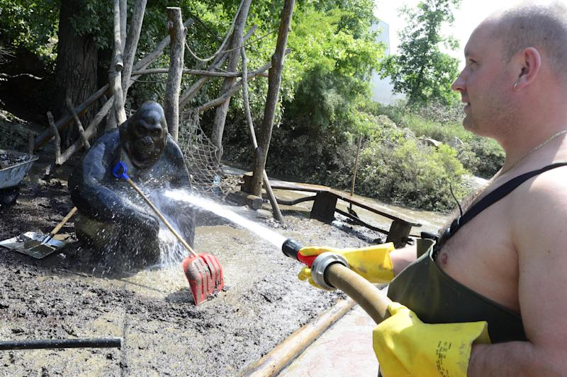 FILE - In this June, 7, 2013 file photo worker cleans a gorilla statue in the zoo in Prague, Czech Republic. More than a decade after many of its animals drowned, the Prague Zoo is counting the cost of yet another devastating flood. In 2002, more than 100 animals died. This time, only a handful of animals were swept away and an army of volunteers are making sure the hundreds that have been evacuated return home as soon as possible. (AP Photo/CTK, Roman Vondrous, File) SLOVAKIA OUT