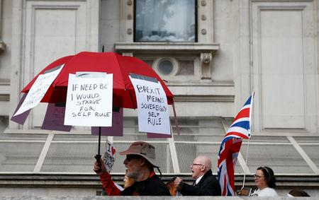 FILE PHOTO: Pro-Brexit protesters demonstrate on Whitehall in London