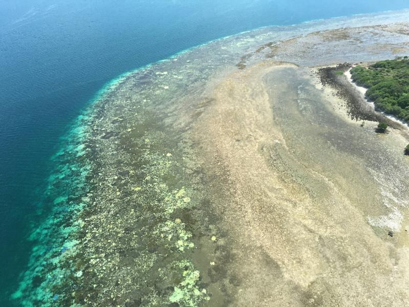 Aerial surveys of the Great Barrier Reef coast last month revealed the worst bleaching on record along a 1,000-km stretch of the site's pristine north (AFP Photo/James Kerry)