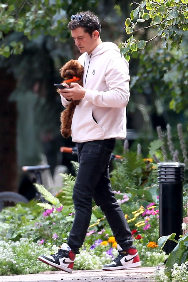 <p>While the <i>Pirates of the Caribbean</i> actor (and possibly Katy Perry's boyfriend again) is always easy on the eyes, he easily improves a pic's cuteness factor when his adorable pup, Mighty, is in the frame. (Photo: BACKGRID USA) </p>