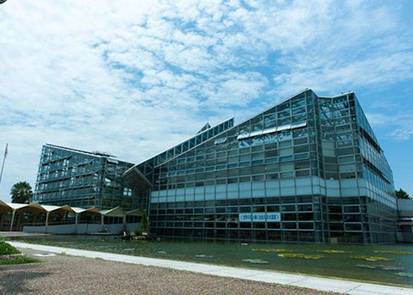 ▲The Sakuya Konohana Pavilion is a 2-story greenhouse. The building seems to have been designed in the image of a water lily.
