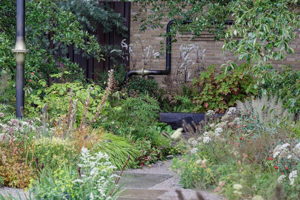 <p><strong>SHOW GARDEN | Award: GOLD</strong></p><p>Designed by Charlotte Harris and Hugo Bugg, this garden is about forging beautiful, vital outdoor spaces in places we need them the most.</p>