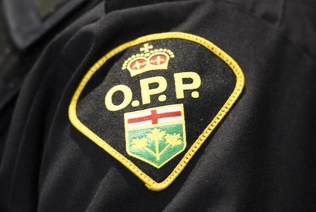 Ontario Provincial Police say a 64-year-old employee of Hucks Marine and Resort in Rockport, Ont., died Saturday after a tree fell on him. (Nathan Denette/Canadian Press - image credit)