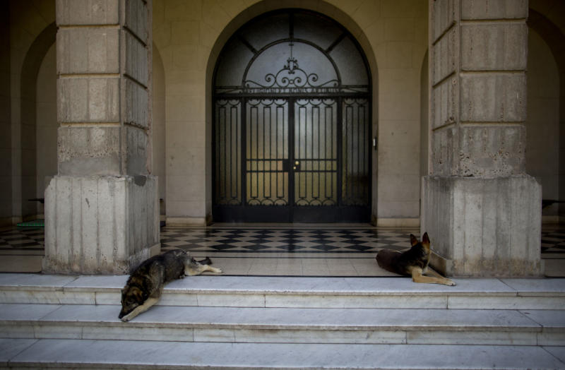 In this Nov. 29, 2013 photo, two dogs lie on the entrance of the Colegio Maximo in Buenos Aires, Argentina. Jorge Mario Bergoglio, now Pope Francis, studied philosophy and theology and became a priest at this school. He also lived there in different periods of his life, first when he served as Provincial of the Jesuits in Argentina from 1975 to 1979 and later, when he became Rector between 1979 and 1986. Pope Francis conspired right under the soldiers' noses at the theological seminary he directed, providing refuge and safe passage to dozens of priests, seminarians and political dissidents marked for elimination by the 1976-1983 military regime. (AP Photo/Natacha Pisarenko)
