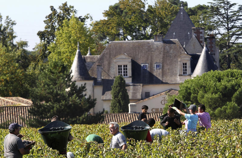 FILE - This Monday, Oct. 7 , 2013, file photo shows workers collecting red grapes in the vineyards of the famed Chateau Haut Brion, a Premier Grand Cru des Graves, during the grape harvest in Pessac-Leognan, near Bordeaux, southwestern France. Amid a rising tide of concern and protest in France over the use of legal toxins by its massive and powerful farming industry, President Emmanuel Macron's government is planning the enforced creation of small buffer zones to separate sprayed crops from the people who live and work around them. (AP Photo/Bob Edme, File)