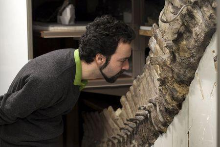 Sergio Bertazzo, a biomedical physical scientist at Imperial College in London, examines a fossil at Natural History Museum in London in this undated handout photo provided by Laurent Mekul, June 9, 2015. REUTERS/Laurent Mekul/Handout via Reuters